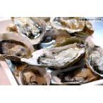 生かき 生牡蠣 生食用 殻つき 10個入り 冷凍 兵庫県産