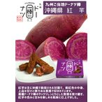 九州ドーナツ棒 沖縄県 紅芋(20本)