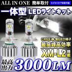 LEDライト オールインワン一体型 3000LM 最高出力 1年保証