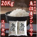 魚沼産コシヒカリ 御歳暮 ギフト 29年度産 お米 20kg(10キロ×2袋) 特別栽培米 送料無料