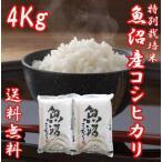 魚沼産コシヒカリ 御歳暮 ギフト 29年度産 お米4kg (2キロ×2袋) 特別栽培米 送料無料