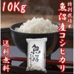 魚沼産コシヒカリ 御歳暮 ギフト 29年度産 お米 10kg(10キロ×1袋) 特別栽培米 送料無料