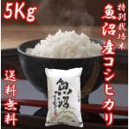 魚沼産コシヒカリ 御歳暮 ギフト 29年度産 お米 5kg(5キロ×1袋) 特別栽培米 送料無料