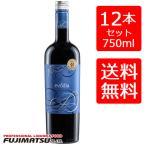送料無料セット エヴォディア 750ml 赤 12本(1ケース) エボディア evodia 赤ワイン レッドワイン コスパ重視 ミディアムボディ