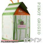 【オーガニックワイン】ルナーリア・ピノ・グリージョ 白ワイン 3L(パックワイン 辛口 白ワイン オレンジワイン)※6セットまで1個口で発送可能