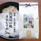 【白米】【農薬不使用】令和元年産 島根県吉賀町『注連川の糧』K1きぬむすめ 5kg