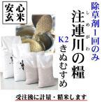 島根県 28年産 清流米『注連川の糧』K2きぬむすめ 安心玄米1kg グループ基準=K2(有機質肥料100% 農薬3成分以内)