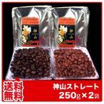コーヒー豆 バリ・アラビカ 神山 250g×2袋【送料無料】藤田珈琲 コーヒー