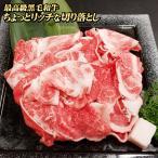 黒毛和牛 ちょっとリッチな切り落とし 500g×2パック 合計1kg 黒毛和牛 切り落とし 牛肉 国産 すき焼き 肉
