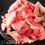 黒毛和牛 霜降り スジ肉 500g (冷凍便でお届け)「阿波牛の藤原」 牛すじ 肉 牛スジ 肉