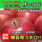 減農薬!青森完熟りんご「サンふじ」●贈答用5キロ!