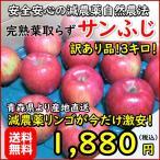 青森リンゴ サンふじ 訳あり品3キロ 安心安全の減農薬 葉取らず完熟だから美味い 生産農家より直送 新春特別商品 今だけ限定お得です