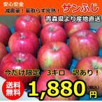 訳あり!減農薬!青森完熟葉取らずりんご「サンふじ」●3キロ!