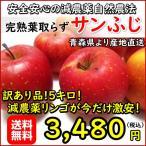 数量限定!青森リンゴ サンふじ 訳あり品5キロ 安心安全の減農薬 葉取らず完熟だから美味い 生産農家より直送 最終特別特価品 今だけ限定お得です