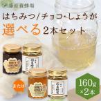 選べる国産はちみつ藤原国産蜂蜜とチョコまたはしょうがの2本セット 160gx2本
