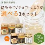選べる国産はちみつ 藤原黄金蜂蜜、藤原国産蜂蜜とチョコまたはしょうがの3本セット 160gx3本