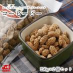 コーヒーピー 250g×2個セット【送料無料】ピーナッツ おつまみ おやつ 菓子
