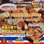 [タイの焼き鳥・アジアンスパイス・シーズニングスパイス] ガイヤーンミックススパイス/40g(タイ北部産)
