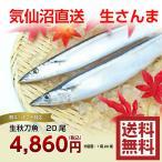 秋刀魚 20尾 気仙沼 サンマ