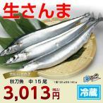 秋刀魚 中15尾 気仙沼 サンマ
