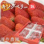 いちご イチゴ 苺 果物 ギフト 旬 フルーツ キングベリー 2Lサイズ×4パック