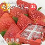 いちご イチゴ 苺 果物 ギフト 旬 フルーツ キングベリー プレミアム3Lサイズ×4パック