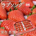いちご イチゴ 苺 果物 ギフト 旬 フルーツ ラブソング デラックス