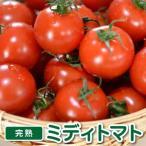 プチトマト 保存期間の画像