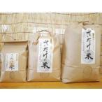 佐竹さんの無農薬ゆきひかり玄米(2kg)(令和1年度産)