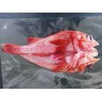 金目鯛 - 船上加工キンキ(3パック)