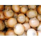 大嶺さんの「有機JAS認証」無肥料栽培玉ねぎ(4.5kg)