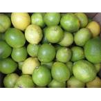 国産有機レモン レモンA品 1kg((サイズ混合、8個前後)