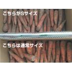 秀さんの人参Sサイズ(規格外品 ジュース用9kg)