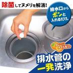排水管の一発洗浄 20錠入 台所 水まわり 排水口 排水管 ぬめり 詰まり 大掃除
