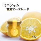 マーマレード 甘夏 ミニ 45g お試し 使い切りサイズ 福田農場 熊本