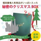 クリスマス ギフト プレゼント 人気 福袋 送料無料 秘密のクリスマスボックス