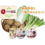 大きな福箱 農園で採れた新鮮野菜とご飯のお供の8点セット じゃがいも2種/白菜/ネギ/小松菜/食べるタレ/梅干し/おかず味噌 送料無料