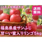 福尽漬 150g×5個セット 国産 無添加 農家のお母さん達の手作り福神漬け 漬物 阿部農縁