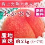 予約販売 福島県産 桃 もぎたて完熟 あかつき 約2kg 6〜7玉 阿部農縁 産地直送 もも モモ ふくしまプライド。体感キャンペーン(果物/野菜)