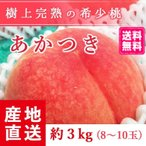 【送料無料 8月上旬発送予約注文】福島県産の桃 もぎたて完熟あかつき 約3kg(8〜10玉) ギフト・贈答用に 阿部農縁 もも モモ