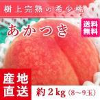 予約販売 福島県産 桃 もぎたて完熟 あかつき 約2kg 8〜9玉 阿部農縁 産地直送 もも モモ ふくしまプライド。体感キャンペーン(果物/野菜)