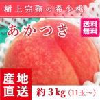 予約販売 福島県産 桃 もぎたて完熟 あかつき 約3kg 11玉〜 送料無料 阿部農縁 産地直送 もも モモ ふくしまプライド。体感キャンペーン(果物/野菜)