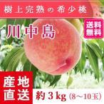 予約販売 福島県産 桃 もぎたて完熟 川中島 約3kg 8〜10玉 送料無料 阿部農縁 産地直送 もも モモ ふくしまプライド。体感キャンペーン(果物/野菜)