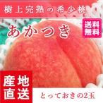 予約販売 福島県産 桃 もぎたて完熟 おどろき 贈答用・ギフト とっておきの2個 送料無料 阿部農縁 もも モモ ふくしまプライド。体感キャンペーン(果物/野菜)