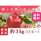 【送料無料 7月下旬〜8月上旬発送予約注文】福島県産の桃 もぎたて完熟なつおとめ 約3kg(11玉〜) ギフト・贈答用に 阿部農縁 もも モモ