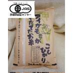 完全無農薬アイガモ君が育てたお米有機JASコシヒカリ2キロ白米