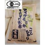 完全無農薬アイガモ君が育てたお米有機JASコシヒカリ2キロ玄米