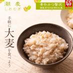 雑穀米700g 雑穀 お試し雑穀米 ご飯 元精穀 10穀米