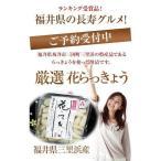 福井県三里浜「三年子花らっきょう」10袋セット 送料無料