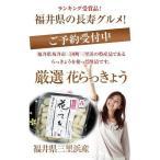 福井県三里浜「三年子花らっきょう」20袋セット 送料無料